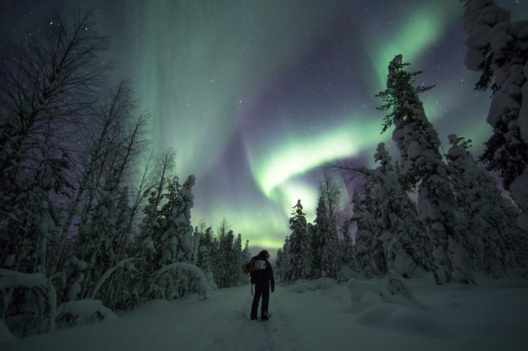 Snowshoe Hiking - Night Time