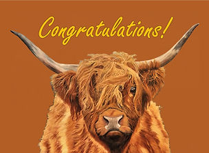 Highland Cow PNG - Congratulations Card.