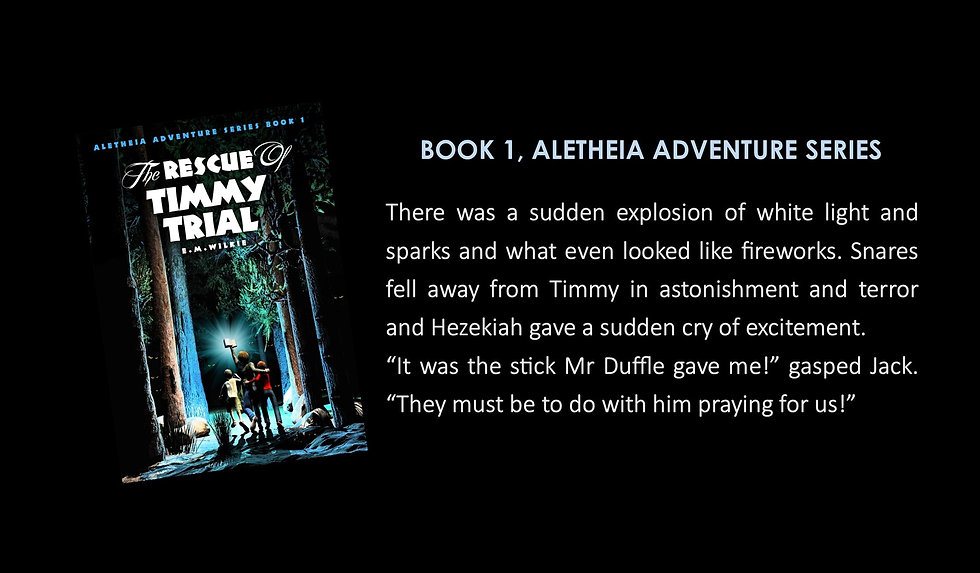 2 Book 1 Advert for Timmy Trial.jpg