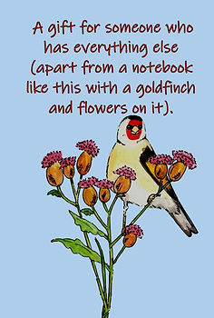 FRONT COVER GOLDFINCH NOTEBOOK FOR PEOPLE WHO HAVE EVERYTHING.jpg