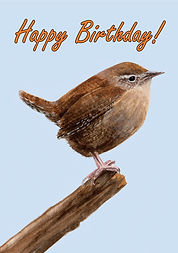 Wren Happy Birthday Card.jpg