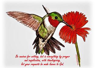 Humming Bird with Philippians 4.6 Bible