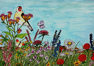 Flower Meadow.jpg