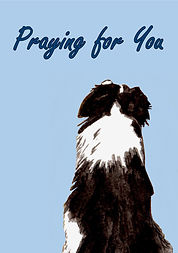 Got Your Back - Praying for You Card.jpg