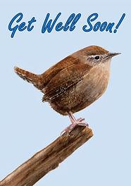 Wren Get Well Soon Card.jpg