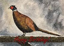 Pheasant in Winter Birthday Card.jpg