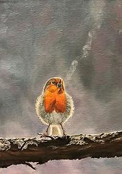 The Beauty of Birdsong.jpg