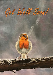 The Beauty of Birdsong - Get well soon c