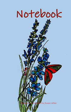 FRONT COVER-BLUE FLOWERS-BUTTERFLY.jpg