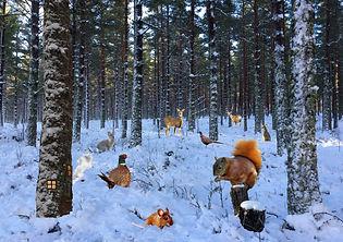 Winter Weenies Scene NEW JPEG.jpg