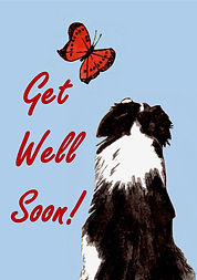 Friendly Fascination - Get Well Soon! Ca