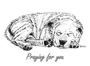 Sleeping Dog - Praying for You Card.jpg