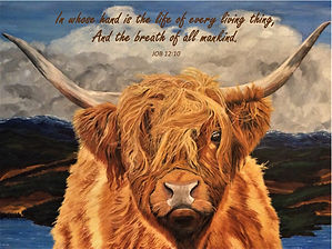 Highland Cow- with Job 12.10 Bible Verse