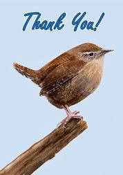 Wren Thank You Card.jpg