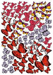 Crowd of Butterflies.jpg