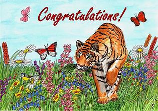 Tiger Congratulations Card.jpg