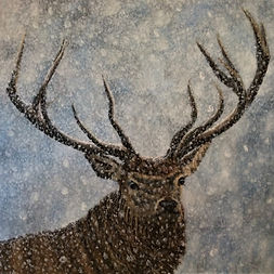 Not Afraid of the Snow - Stag in Snow.jp