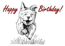 Follow your Nose Dog Birthday Card.jpg