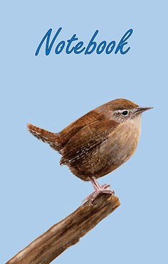 FRONT COVER-JENNY WREN-5x8 COVER TEMPLAT