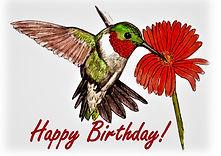 Humming Bird Birthday Card.jpg