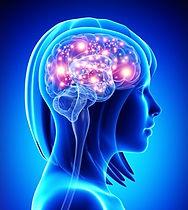 Szybka i skuteczna terapia oparta na neurobiologii metodą One Brain Warszawa Trójmisto Gdańsk Gdynia Sopot