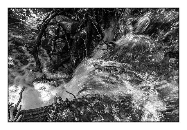 McKane - Black & White.jpg