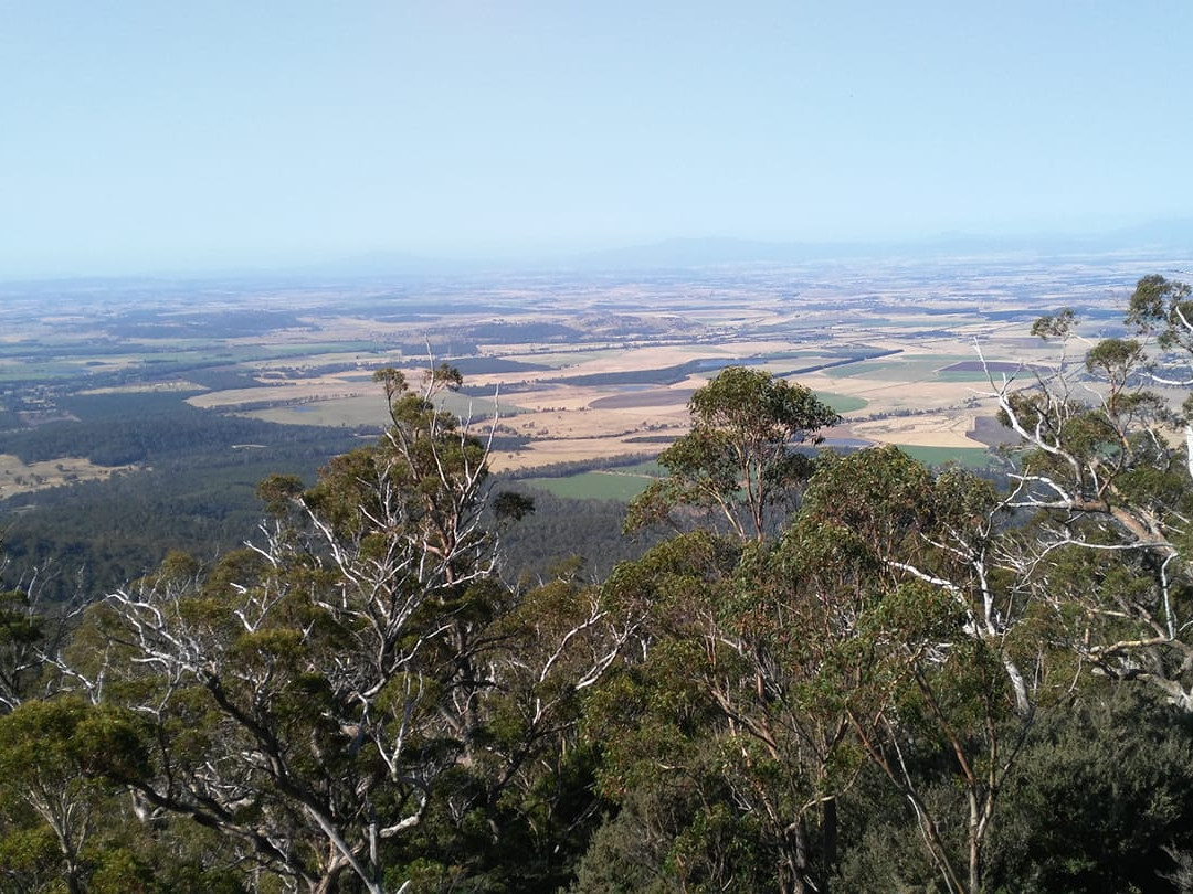 PanoramaPhoto.jpg