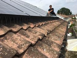 Solar panel netting installation