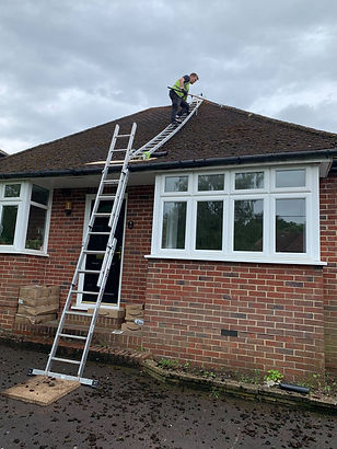 Moss removal Roof cleaning