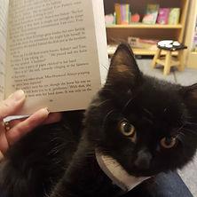 Bilbo and Book.jpg