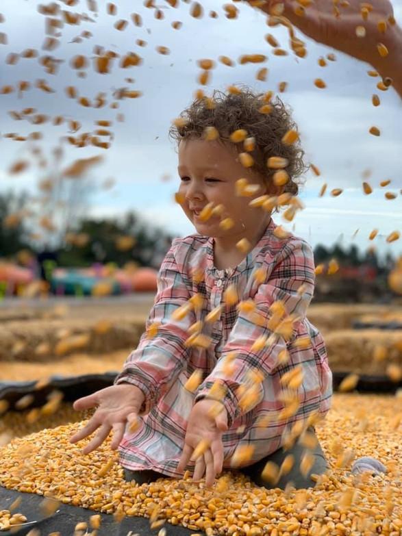 Corn Bins & Slide