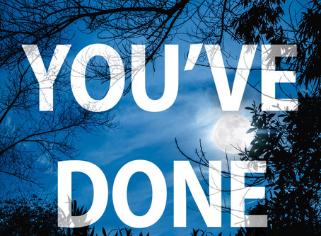 Extract of Joyce Schneider's latest romantic suspense thriller: WHAT YOU'VE DONE