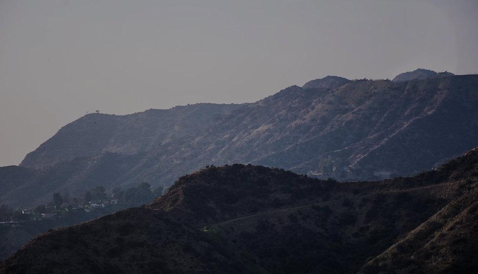 Strain Balboa Caregivers Background