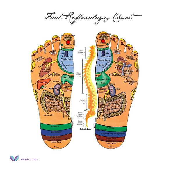 Foot-Reflexology-Chart.jpg