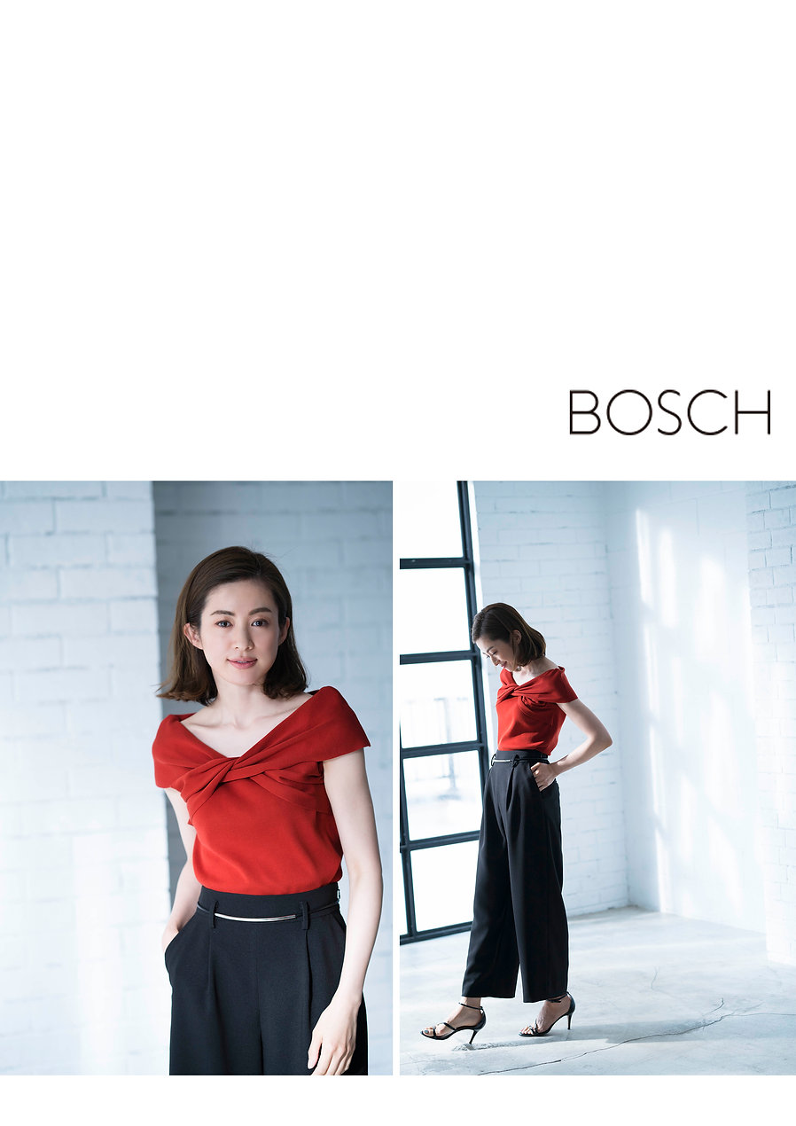 BOSCH_page8.jpg