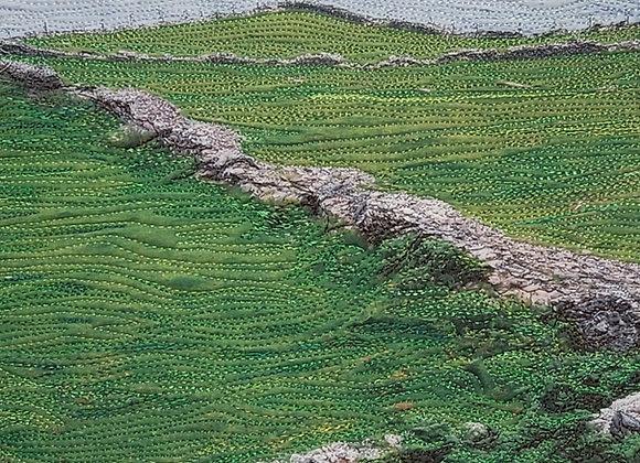Ireland Rocks!