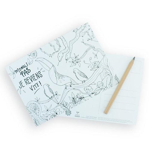 🇫🇷 Carte à colorier jungle - Agent Paper