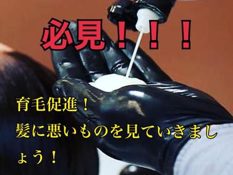 育毛促進!!