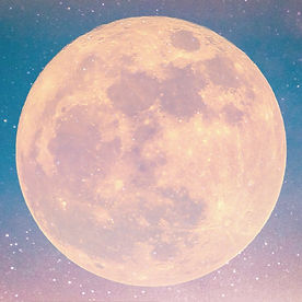 月の裏の彼女