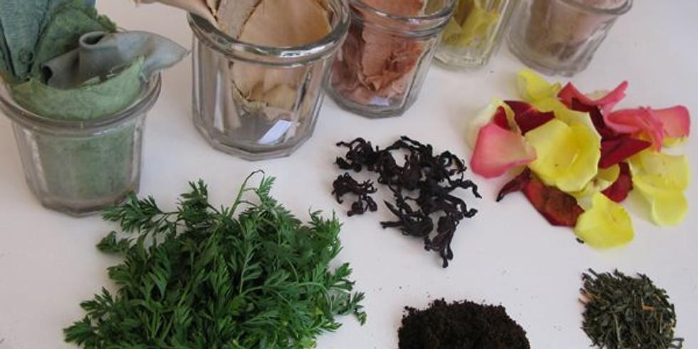 Atelier Plantes tinctoriales (tissu bio et teinture végétale)