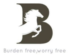 Burden Free Moving