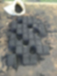 IMG-6151.JPG
