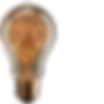 bulb_zing_004.png