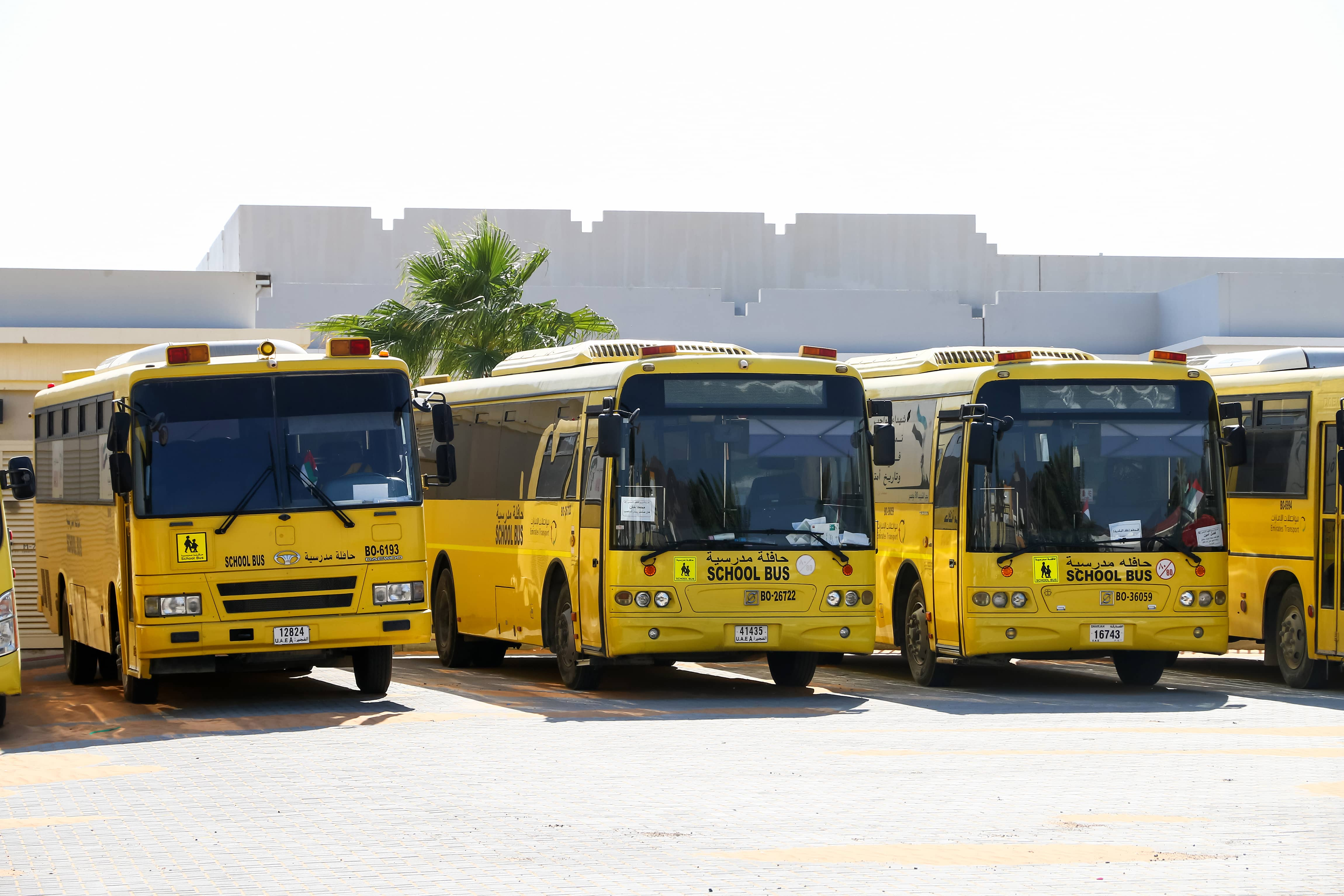 3 Yellow School Buses in the Middle East