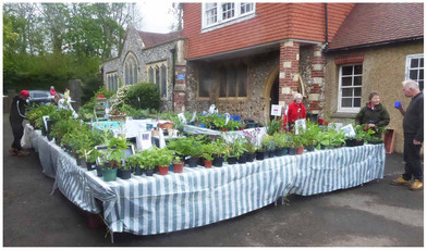 Plant sale at Saint Peter's Church 22 5