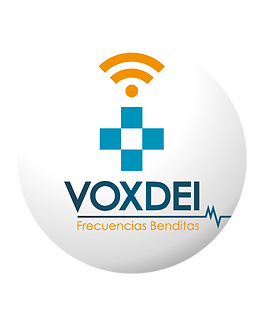 MVNetworks-canales-04.png