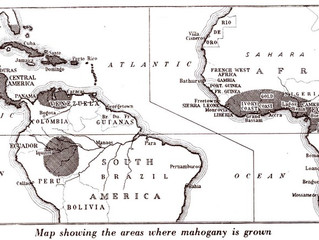 TIMBER TIME: MAHOGANY
