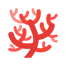 icons8-coral-96.png
