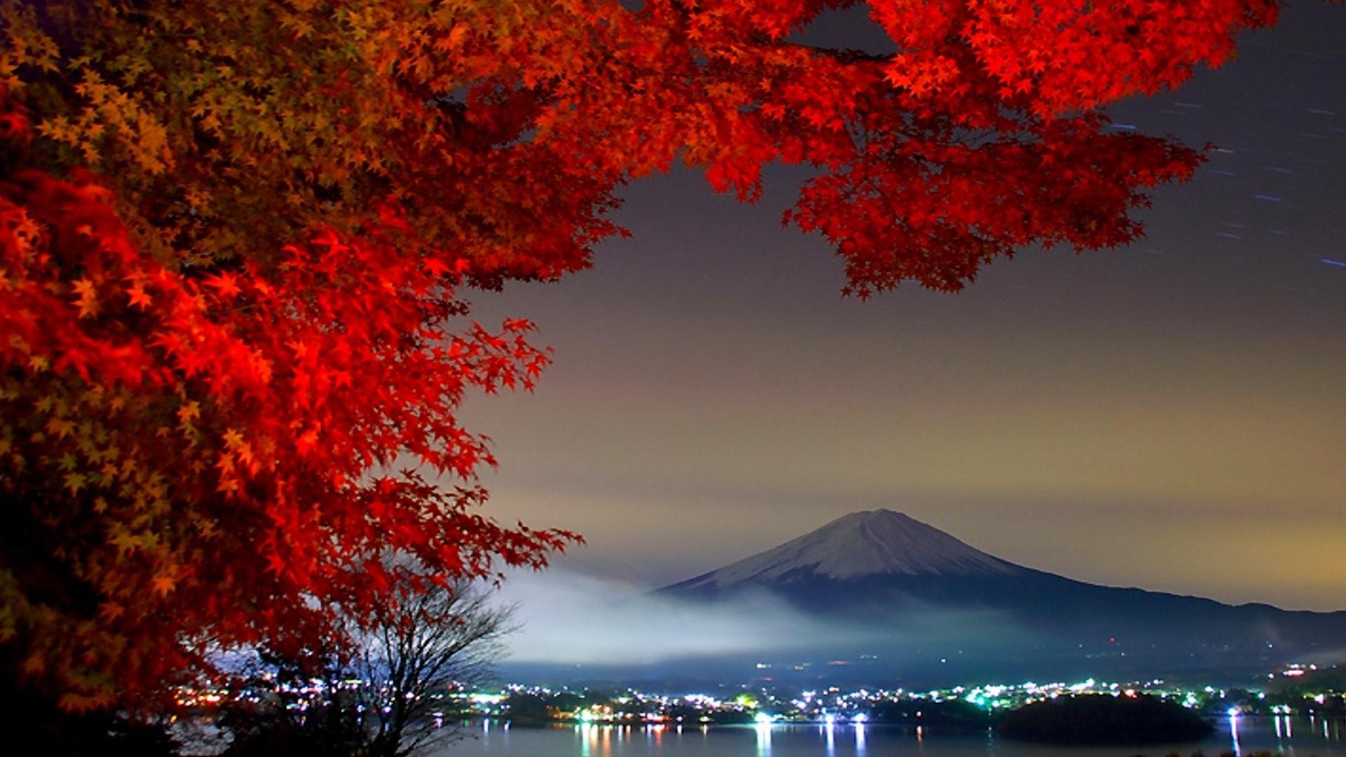 1794_mount_fuji.jpg
