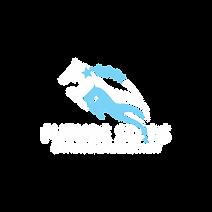 FS_logo_white_1500px.png